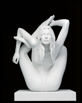 Marc Quinn - Sculptures & Paintings