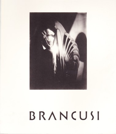 Brancusi The Sculptor as Photographer