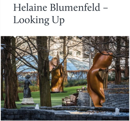 Helaine Blumenfeld - Looking Up