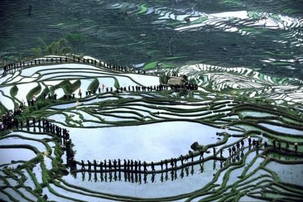 Yann Layma China – Bild Und Wirklichkeit