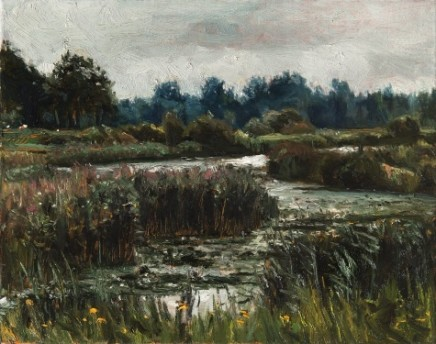 Het Bossche Broek (The Bossche Brook) near 's-Hertogenbosch