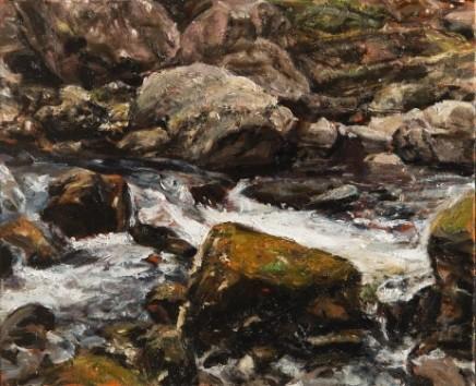 Rocks, Swallow Falls, Snowdonia