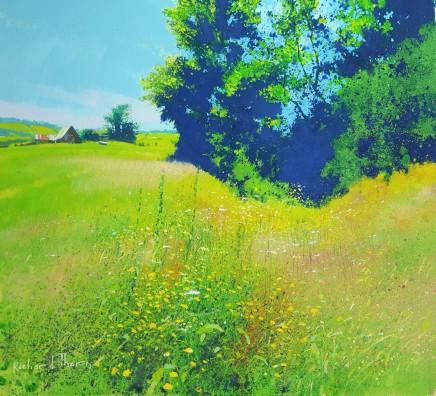 Wyeth country