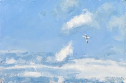 Gannet & Clouds
