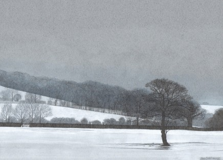 A Solitary Alder, towards Coleshill SOLD