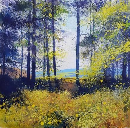 Dartmoor Pines SOLD