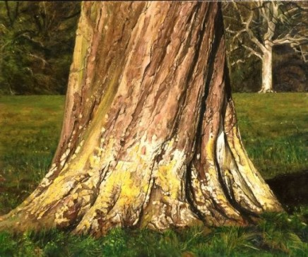 Cotswold trees II
