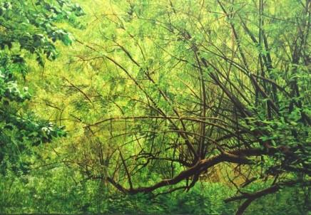 Hampstead Heath Bushes