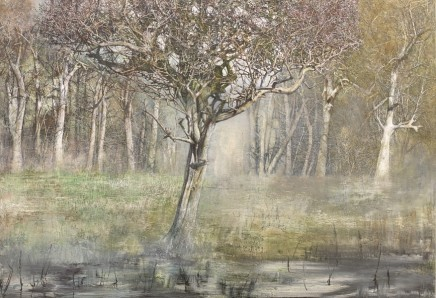 Self Portrait as a Hawthorn Tree