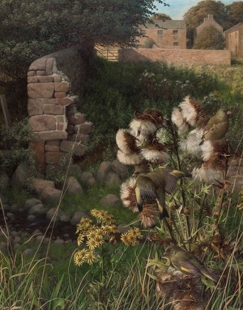 Raymond Booth Green Finches & Thistle Down