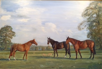Keith Money Thoroughbreds in a landscape