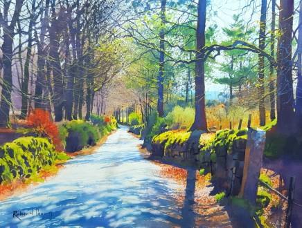 Richard Thorn Spring Light, Dartmoor