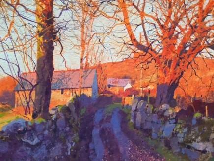 Richard Thorn The Fading Light