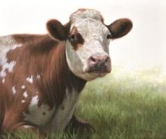 Jessie the Cow Alexandra Klimas