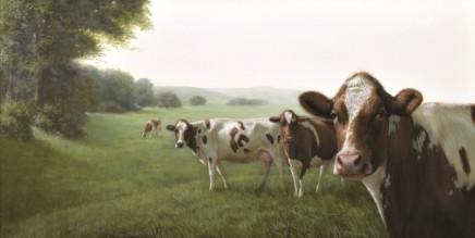 Cows in a Landscape Alexandra Klimas