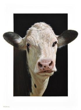 Lora the Cow Alexandra Klimas