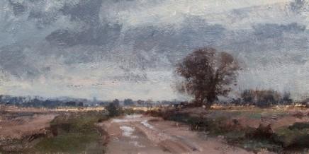 The Track through the Marsh Matthew Alexander