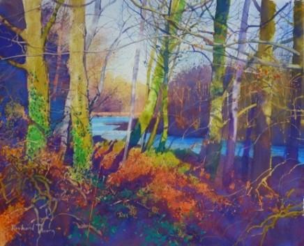 Winter Oasis Richard Thorn