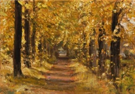 Lane at Coudewater