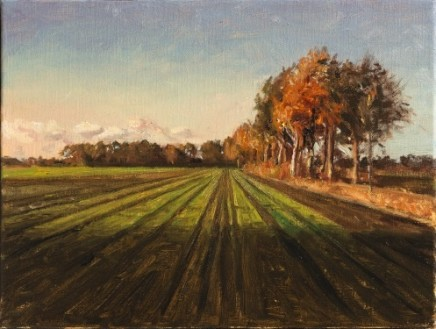 Long shadows SOLD