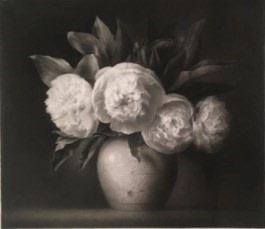 Flower Drawing (No.85) Ex catalogue