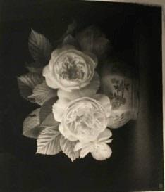 Flower Drawing (No.86) Ex catalogue