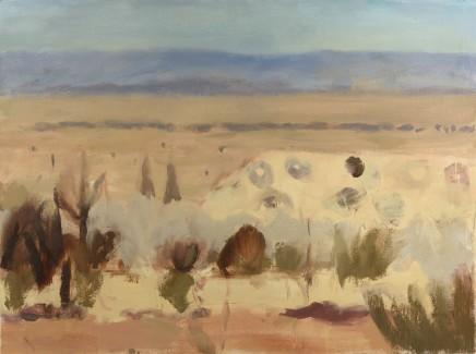 Desert Plain II