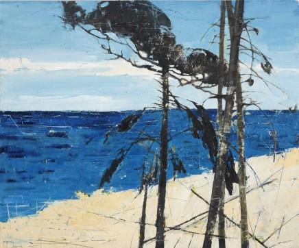 Atlantic Pine II