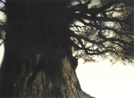 Gary Cook Bourton-on-the-Water Oak No.2