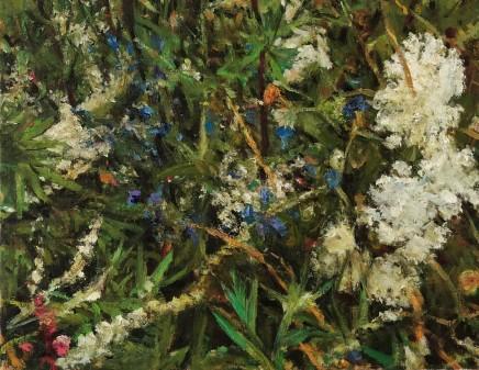 Fred Schley Wild Flower Series No.2
