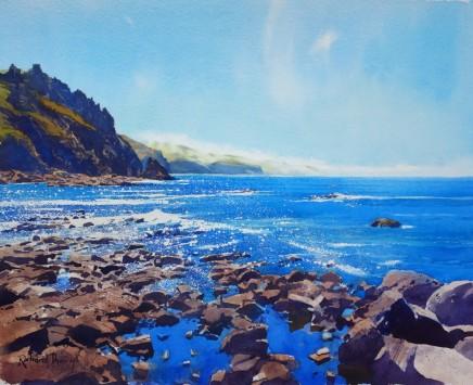 Richard Thorn SWAc Sea Mist at Priest's Cove £1,750
