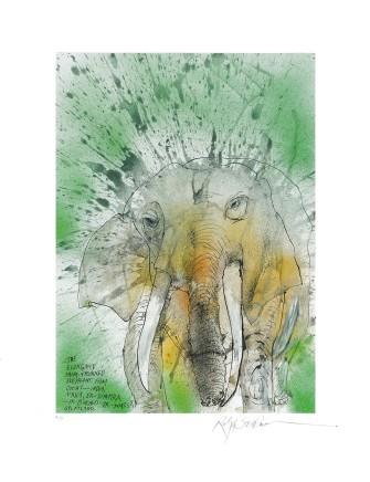 Ralph Steadman African/Asian Elephant £635 (framed)