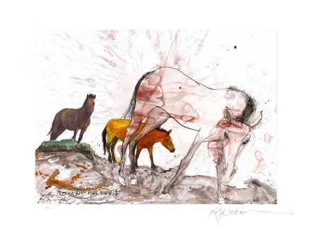 Ralph Steadman Przewalski's Horse £635 (framed)
