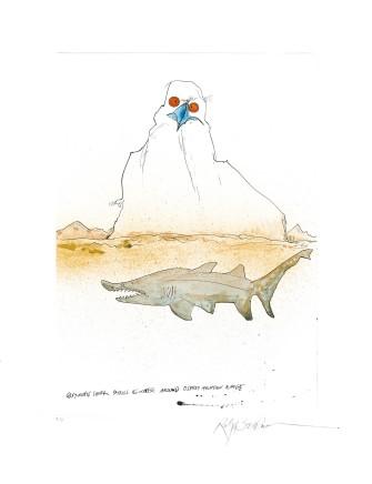Ralph Steadman Grey Nurse Shark £635 (framed)