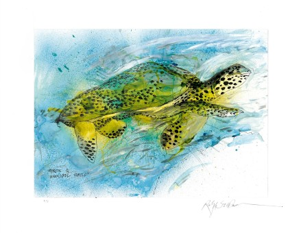 Ralph Steadman Hawksbill Turtle £635 (framed)