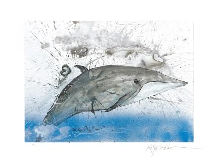 Ralph Steadman Fin Whale £635 (framed)