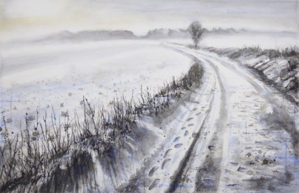 Frozen fields Gary Cook