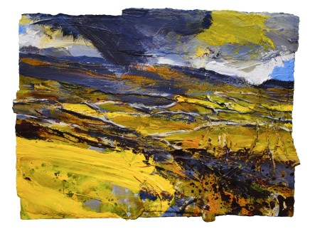 Buttercup Fields and Walls, near Settle, Yorkshire Dales SOLD