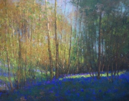 Bluebell Woods SOLD
