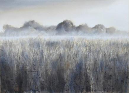 Oak in the water meadows £2,200