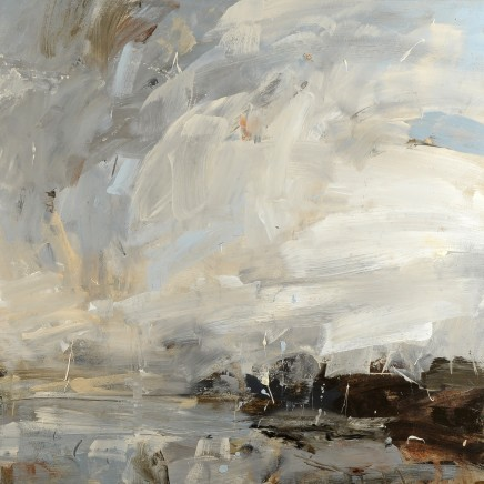 Louise Balaam, From the headland, looking for oystercatchers