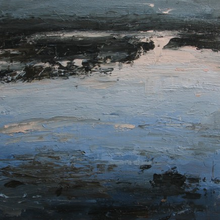 Louise Balaam, Dusk on th estuary looking for otters