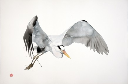 Karl Mårtens, Great Grey Heron Flying