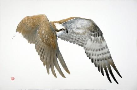 Karl Mårtens, Osprey