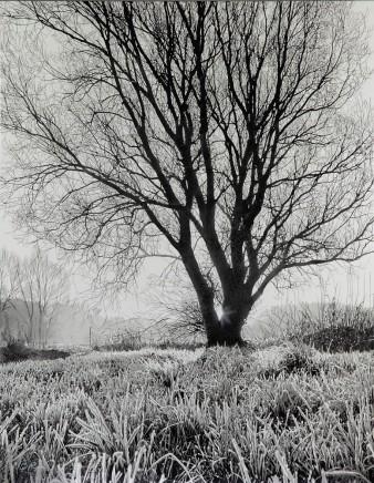 Mark S Payne, Dawn at Grafham Waster (monochrome)