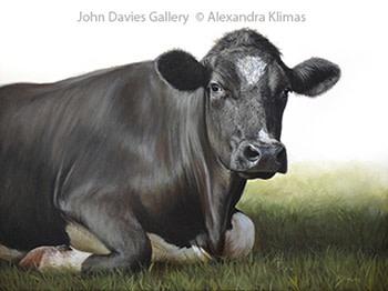Alexandra Klimas, Hannah the Cow