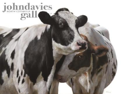 Alexandra Klimas, Ella and Lilly the Cows