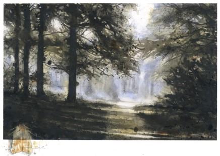 Gary Cook, Sun Glimpse