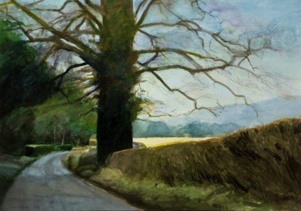 David Prentice, Lane near Coddington, 2009