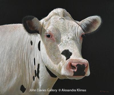 Alexandra Klimas, Liva the Cow